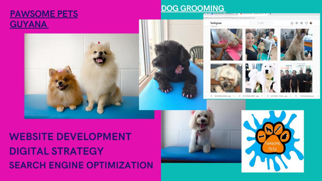 Pawsome Pets Guyana - Dog Grooming